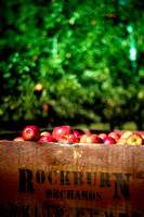 Rockburn Orchards